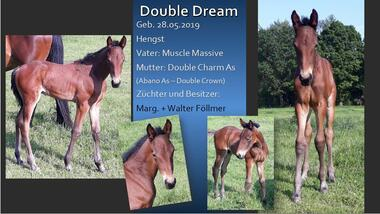 Double Dream