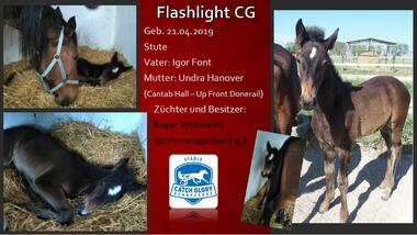 Flashlight CG