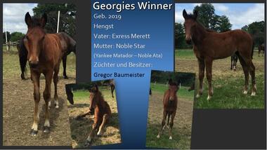 Georgies Winner