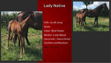 Lady Native